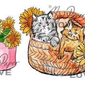 Katter i korg solrosor